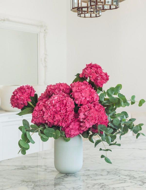 Rosa Hortensien rosa bis rot schöne große Blüten in weißer Vase arrangiert