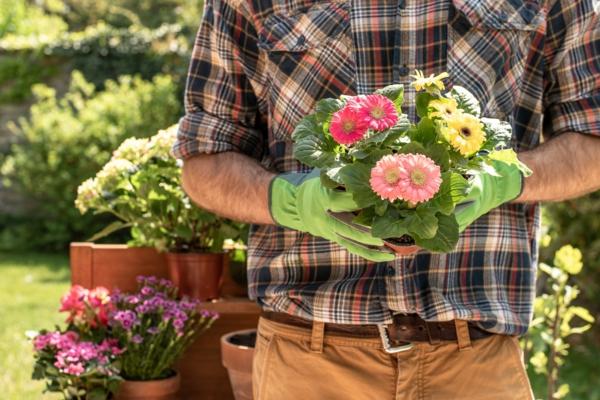 Sommer 2021 So bereiten Sie Ihren Garten auf die kommende Saison vor2