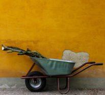 Sommer 2021: So bereiten Sie Ihren Garten auf die kommende Saison vor
