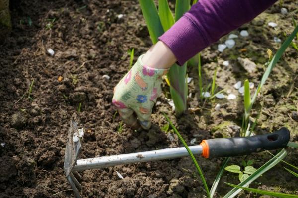 Sommer 2021 So bereiten Sie Ihren Garten auf die kommende Saison vor4