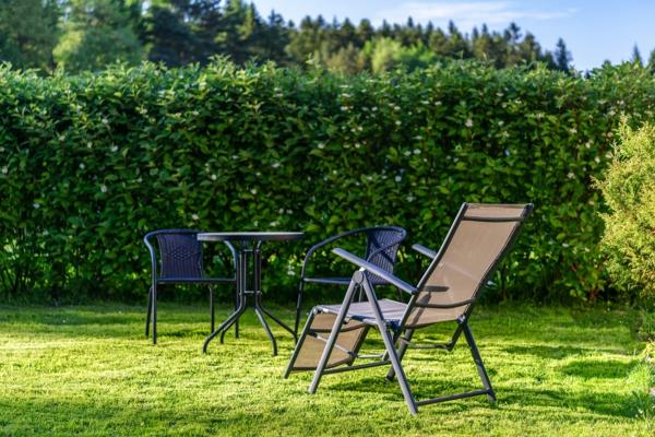 Sommer 2021 So bereiten Sie Ihren Garten auf die kommende Saison vor5