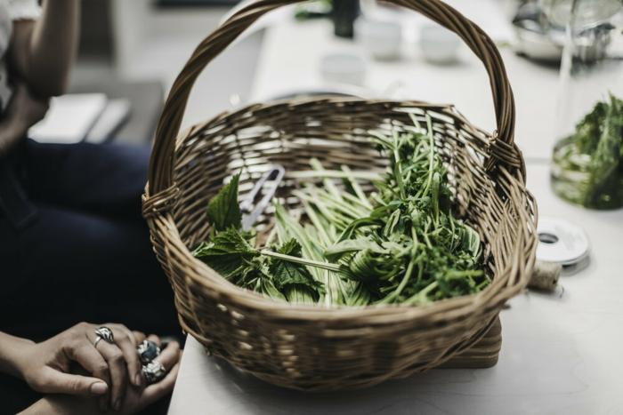 bärlauch rezepte vegan gruen