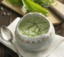 Vegane Rezepte mit Bärlauch- Wirkung und Nebenwirkung des gesunden Küchenkrauts