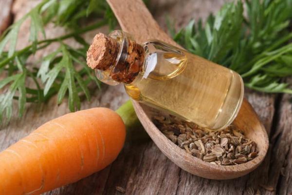 gesundheitliche vorteile von karottenöl