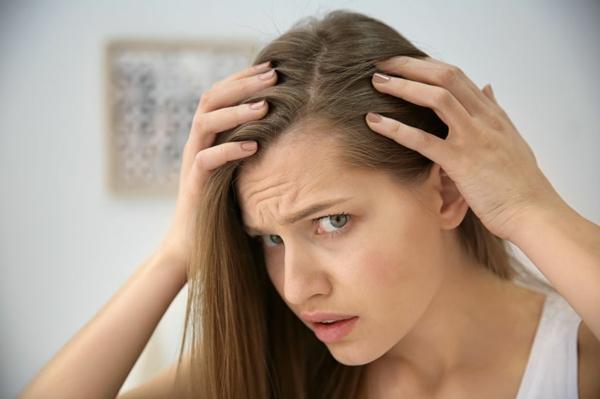 haritaki gegen Haarverlust