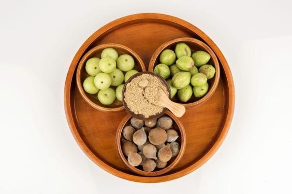 haritaki terminalia chebula früchte pulver