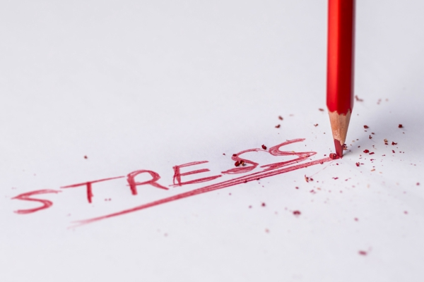 l-theanin gegen stress