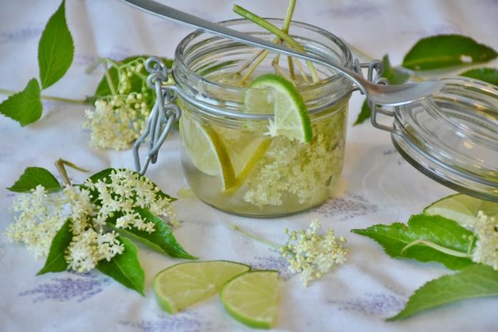 Holunderblüten Rezept mit zitrone mit blatt