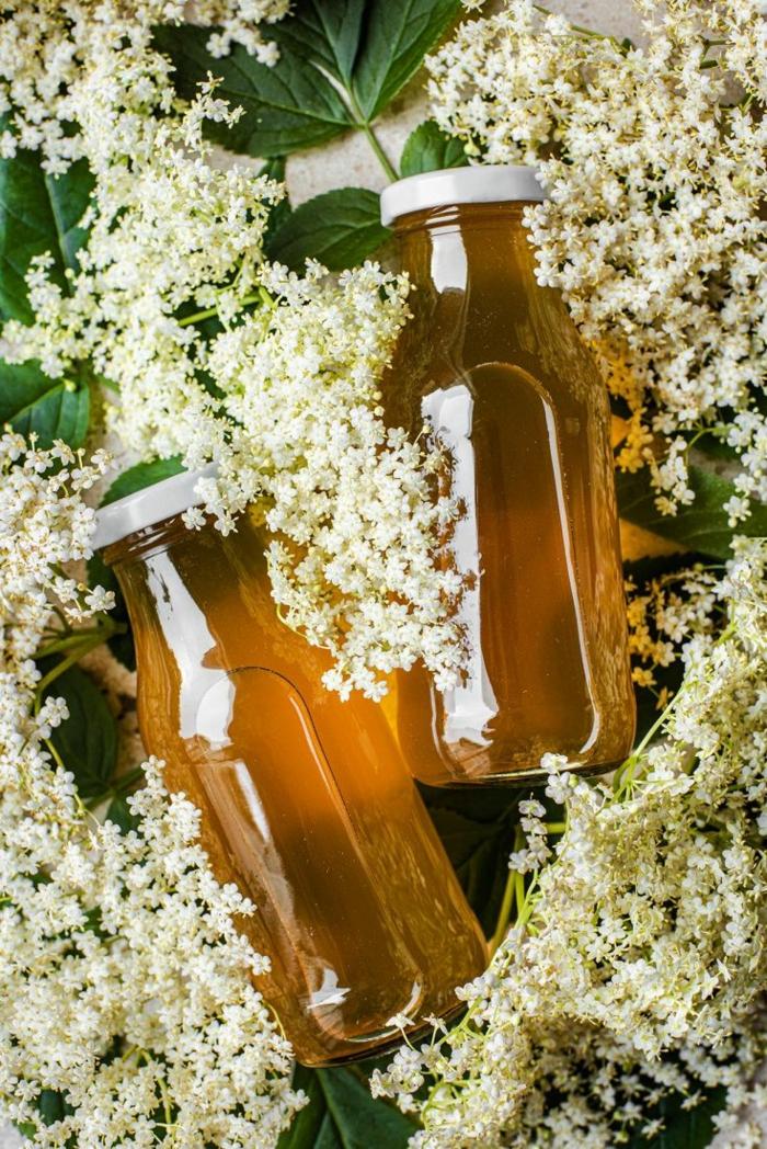 Holunderblüten Rezept sirup als grundlage