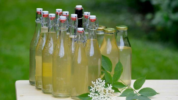 Holunderblüten Rezept sirup in flaschen dicht