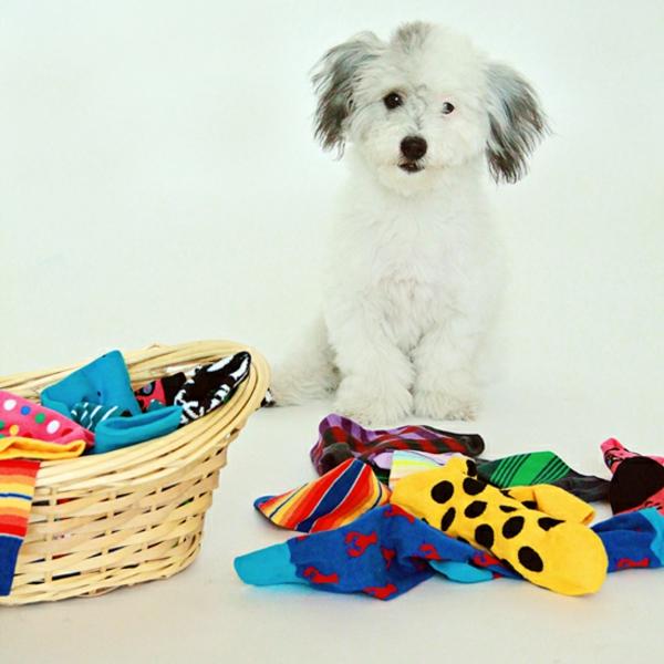 Hundespielzeug aus alten Socken basteln Bastelideen
