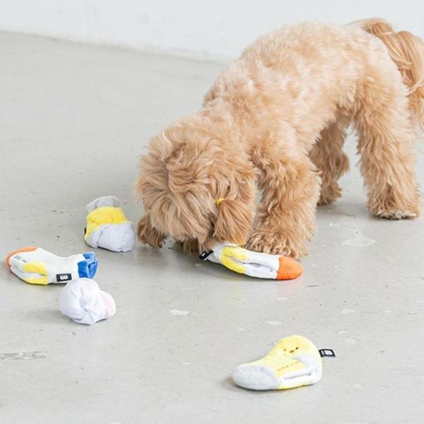 Hundespielzeug aus alten Socken basteln