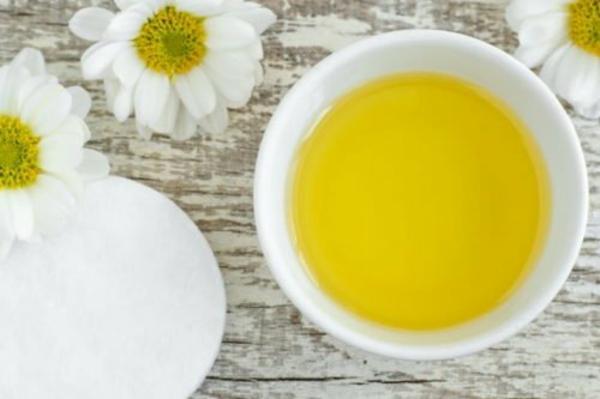 Kamelienöl Vorteile Eigenschaften Kameliensamenöl Haare
