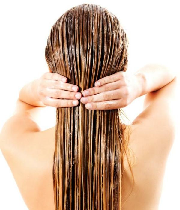 Kamelienöl Vorteile Haarpflege Eigenschaften Kameliensamenöl