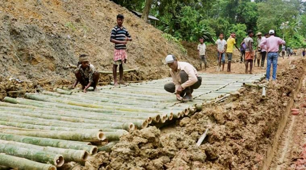 Wie schnell wächst Bambus Bambusbrücke