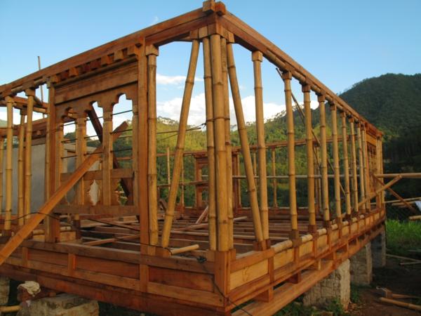 Wie schnell wächst Bambus Bambushaus bauen