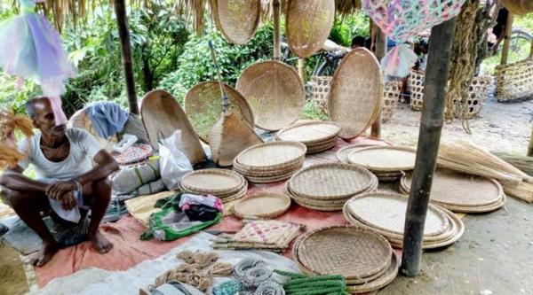 Wie schnell wächst Bambus Bambuskörbe Bambusprodukte