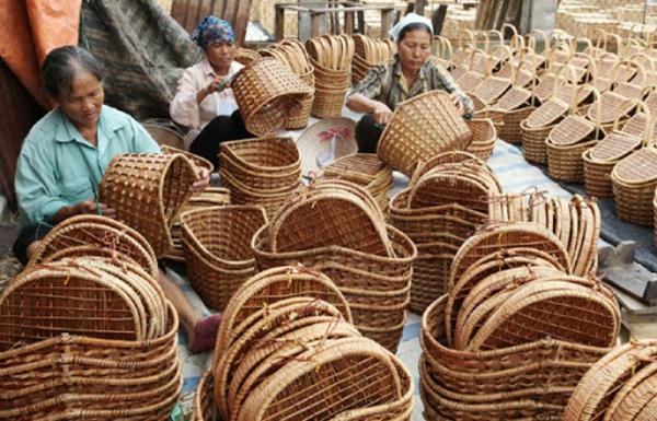 Wie schnell wächst Bambus Wissenswertes Bambuskörbe flechten