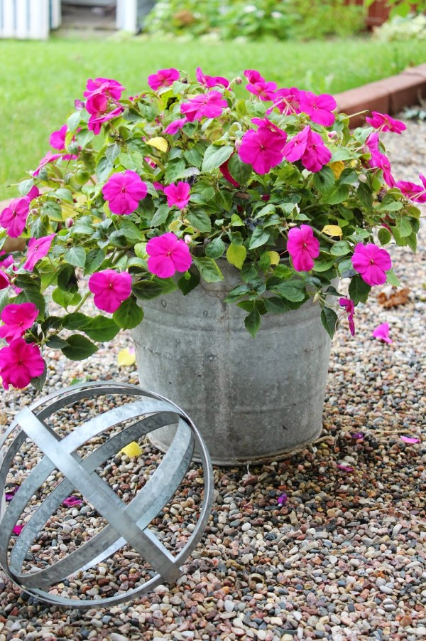 Zinkwanne dekorieren – Ideen und Tipps für eine rustikale Gartendeko garanium pflanze gartendeko