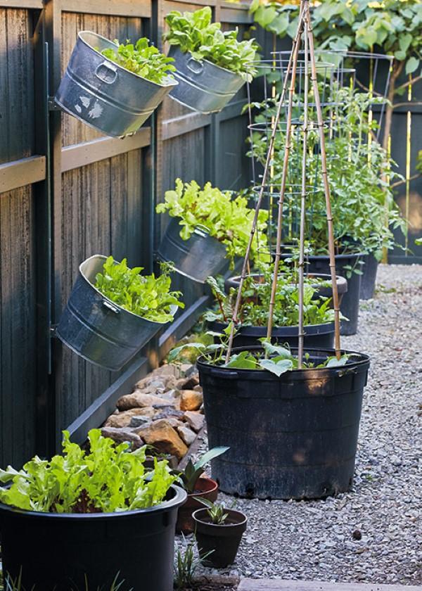 Zinkwanne dekorieren – Ideen und Tipps für eine rustikale Gartendeko vertikal garten hochbeet