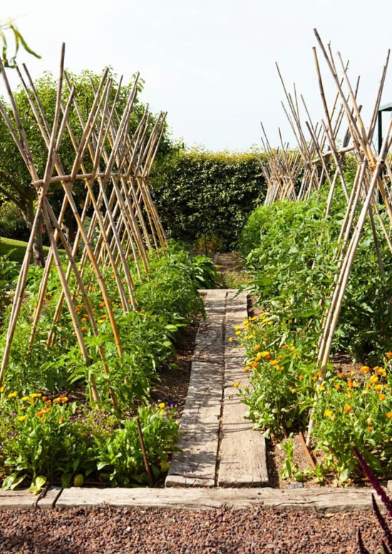 bambus rankhilfe selber bauen