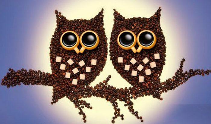 basteln mit kaffeebohnen ungeroestet katze