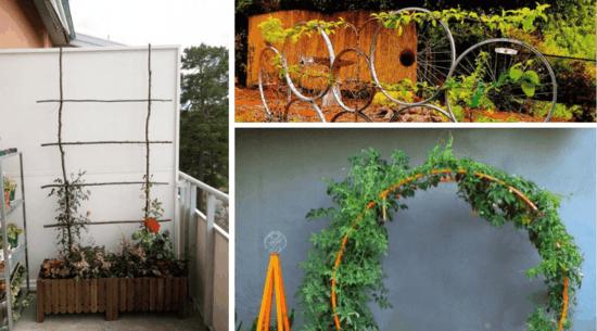 rankhilfe selber bauen upcycling projekt