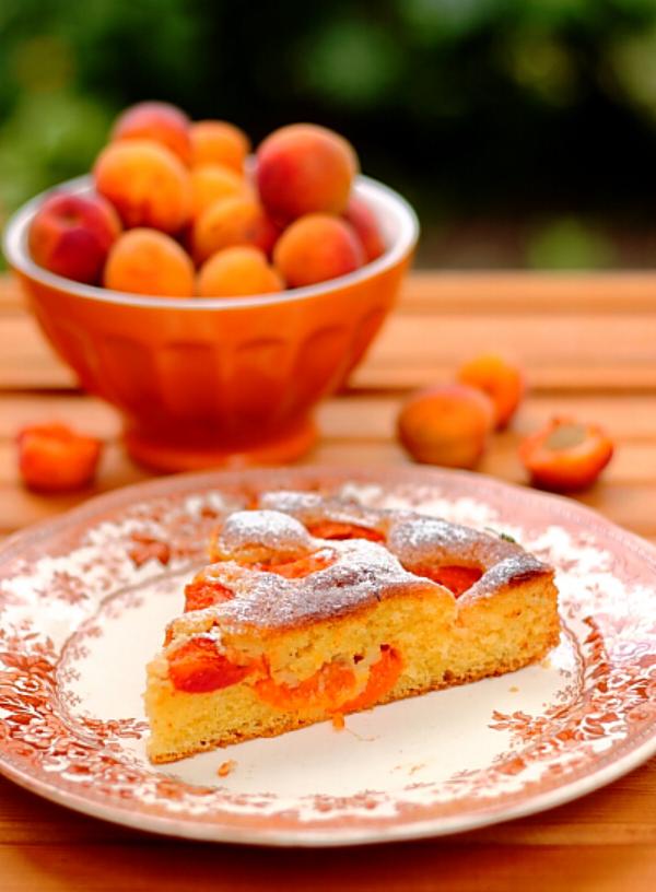 Aprikosenkuchen ein Stück auf dem Teller daneben frische Aprikosen in einer Obstschale