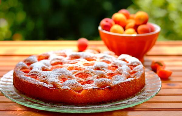 Aprikosenkuchen in runder Backform zubereitet serviert vorzüglicher Geschmack
