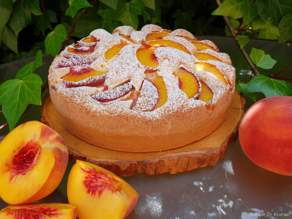 Aprikosenkuchen mit Schmand frischer Geschmack daneben frische reife Aprikosen