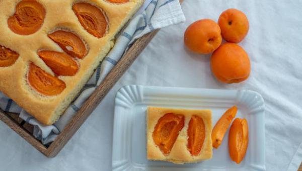 Aprikosenkuchen vom Blech schmeckt immer vorzüglich