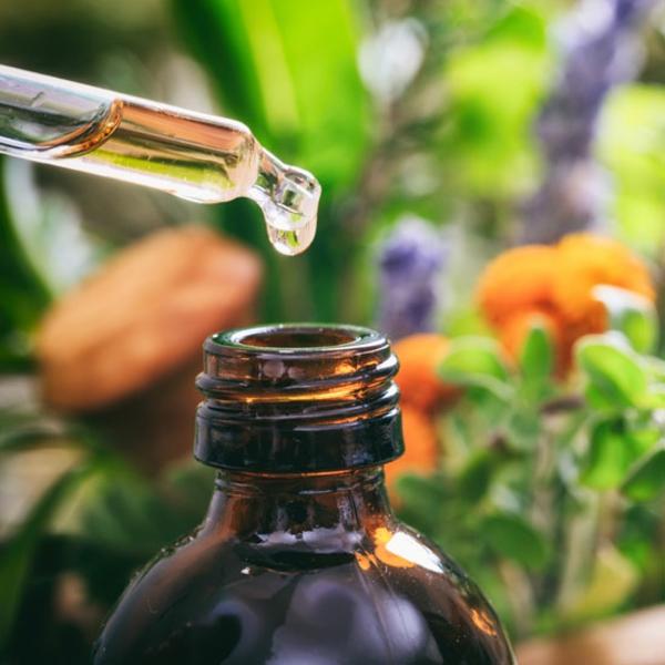 Bitterstoffe benutzen Vorteile gesunde Darmflora Nahrungsergänzung