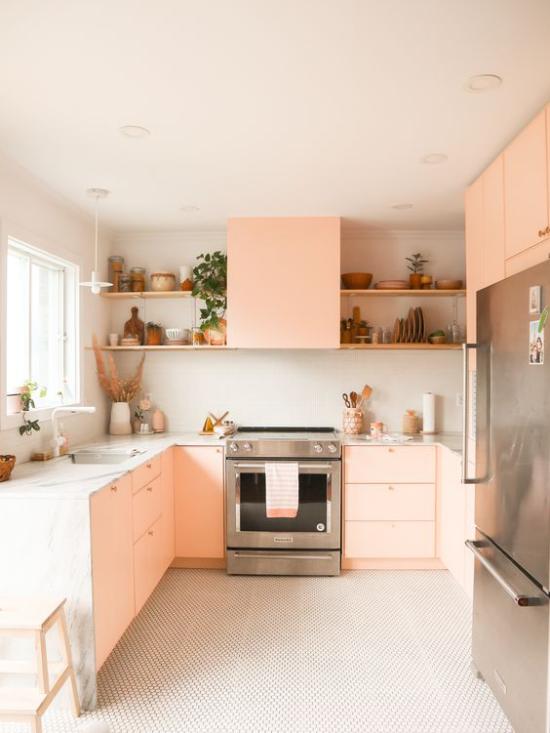 Farbpaare moderne Küche in Lachsrosa und weiß sehr stilvoll gestaltet