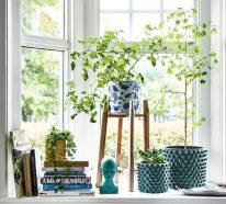 Fensterbank dekorieren für den Sommer – frische Ideen für jedes Interieur