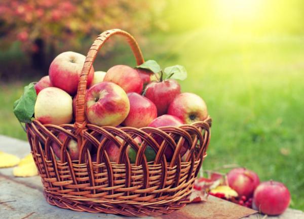 Sattmacher gesund gegen Heißhunger ein Flechtkorb voll mit roten Äpfeln