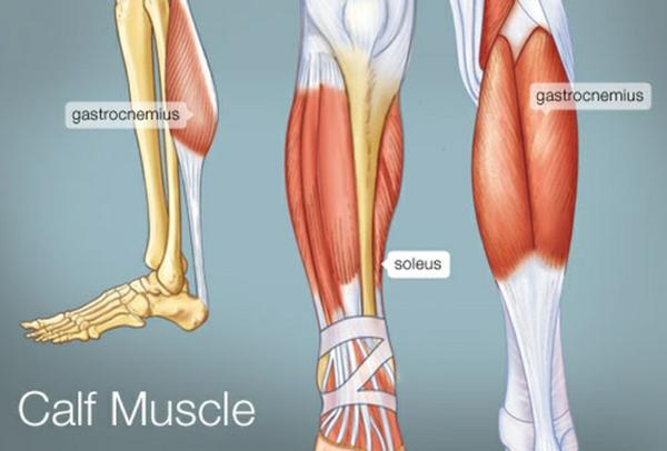 Wadenkrämpfe Muskeln Ursache Wissenswertes