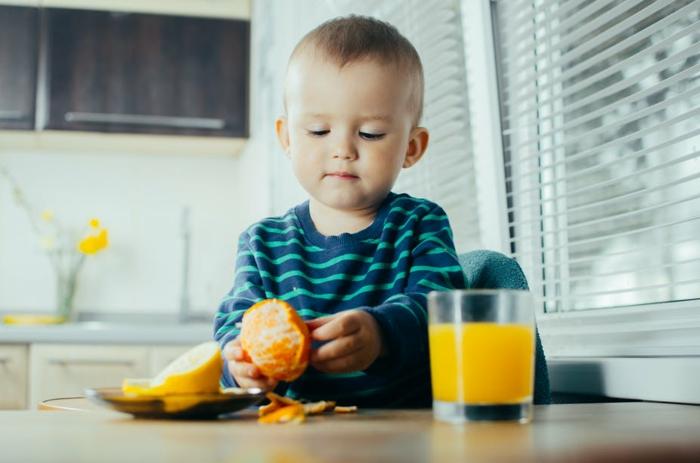 clean eating rezepte beispiel teller erziehung