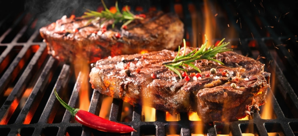 grilltipps fleisch grillen mayonaise