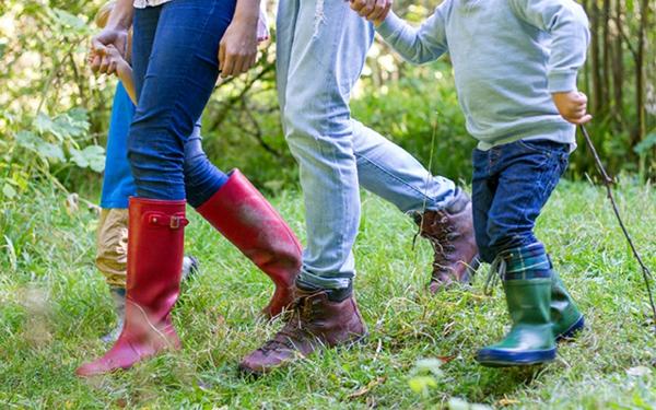 hausmittel gegen zecken tipps spazierengehen wald