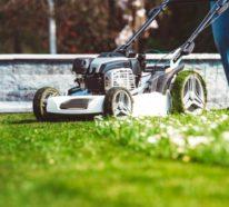 Den richtigen Rasenmäher auswählen – wichtige Kriterien und praktische Tipps