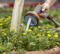 Clevere September – Checkliste für Ihren Garten im Sommer