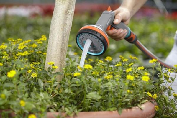 Garten im Sommer Blumen und Obstbäume gießen brauchen viel Feuchtigkeit