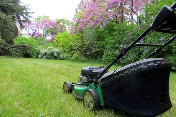 Garten im Sommer Rasenmähen ist eine essenzielle Pflegemaßnahme im Sommergarten