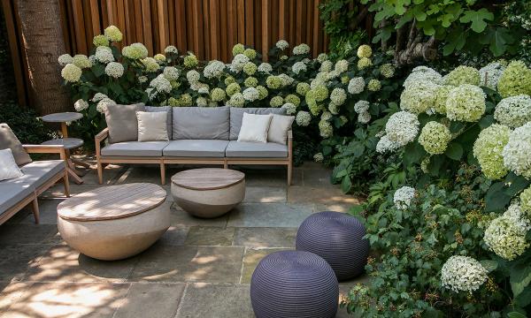 Hortensien zum Blühen bringen Sitzecke im Freien schicke Outdoor-Möbel weiße Hortensienblüten im Halbschatten