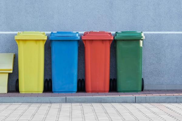 Natürliche Methoden und Hausmittel gegen Fliegen sowie weitere hilfreiche Tipps zum Reinigen von Mülleimern