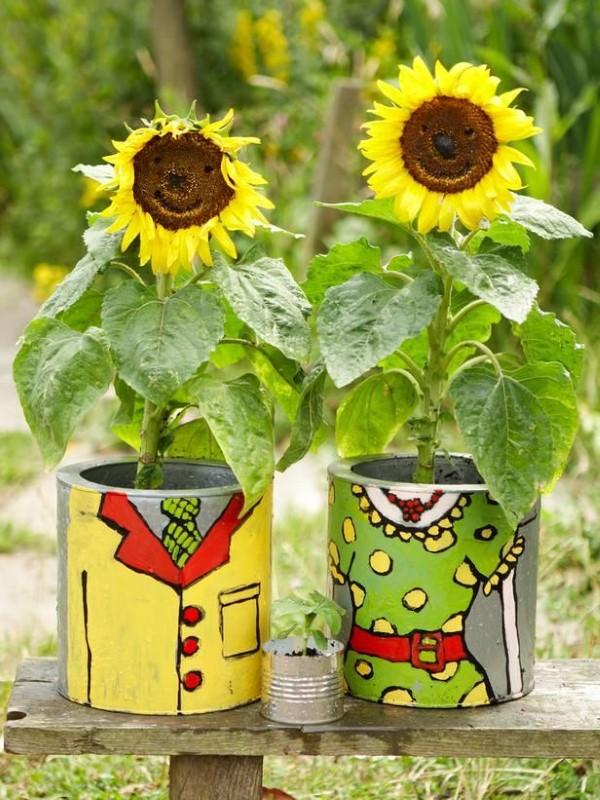 Sonnenblumen Pflege Tipps und Wissenswertes über die sommerliche Zier- und Nutzpflanze aludosen mini sorten
