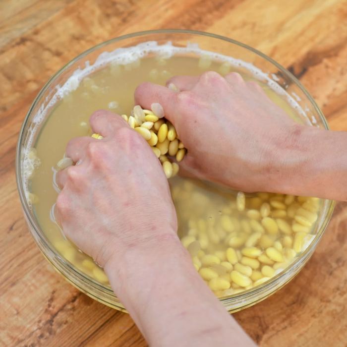 Tempeh Rezept sojabohnen hausgemacht