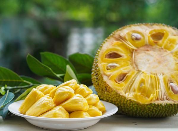 Vegane Jackfruit Rezepte und Wissenswertes über den exotischen Fleischersatz jackfrucht groß reif