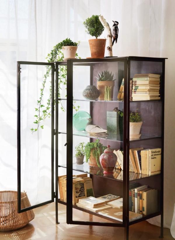 Vitrine dekorieren – Ideen und Tipps für eine gelungene Einrichtung bücher regal pflanzen