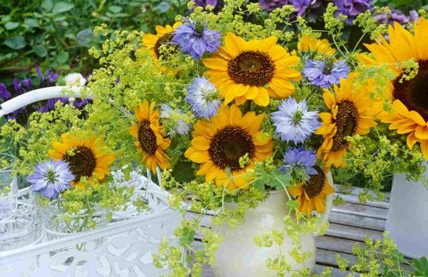 jungfer im grünen sonnenblumen kombination